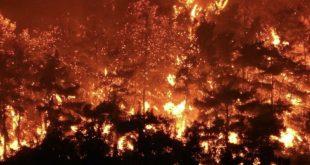 Yangınla ilgili Valilikten Sondakika Açıklaması
